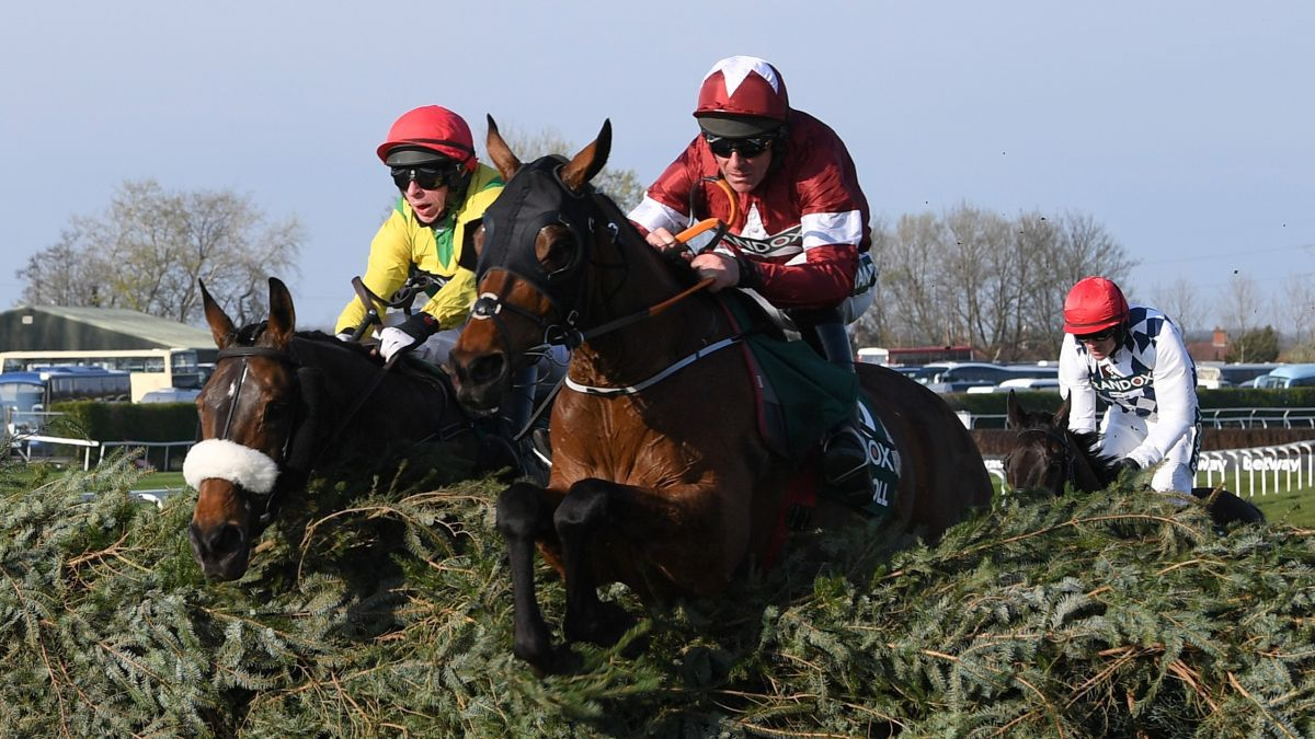 Virtual Grand National 2020: runners, betting, odds and how to watch live today