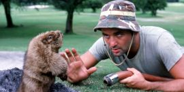 The 21 Most Hilarious Bill Murray Encounters