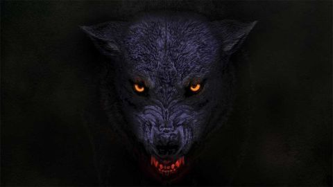 Orange Goblin – The Wolf Bites Back album cover