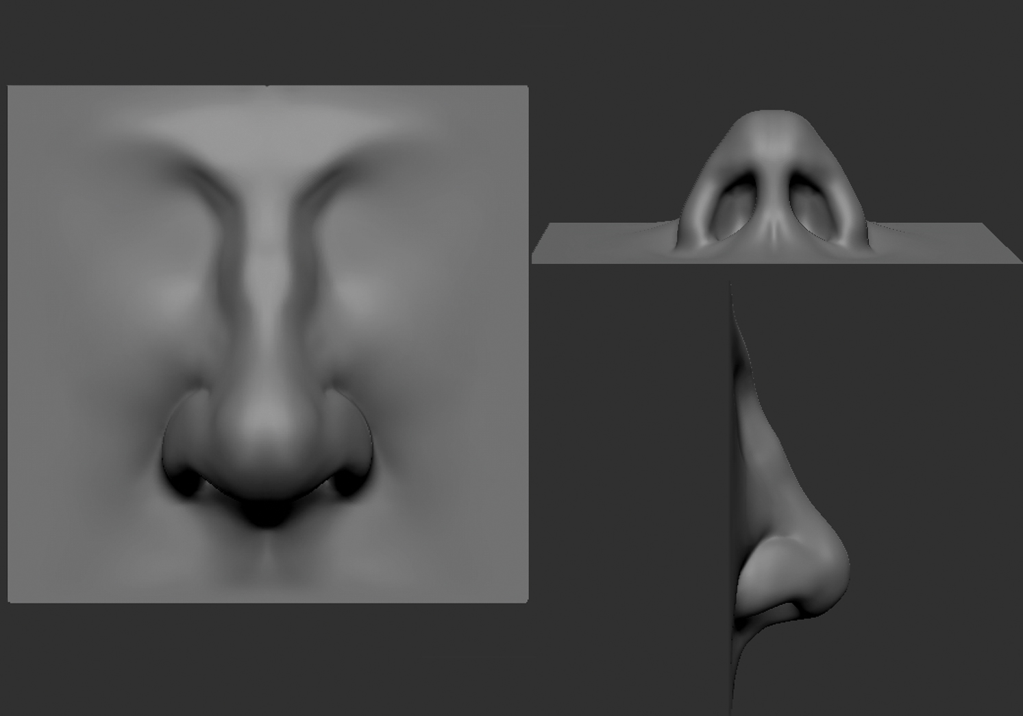 Sculpted nose from three different angles