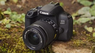 Canon EOS Rebel T8i / 850D