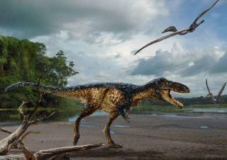 Uzbek tyrannosaur, tyrannosaur relative