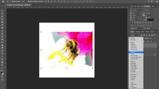 Photoshop tips: Refine Edge tool