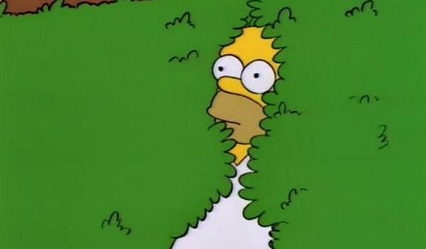 Disearing Homer Meme In Most Meta