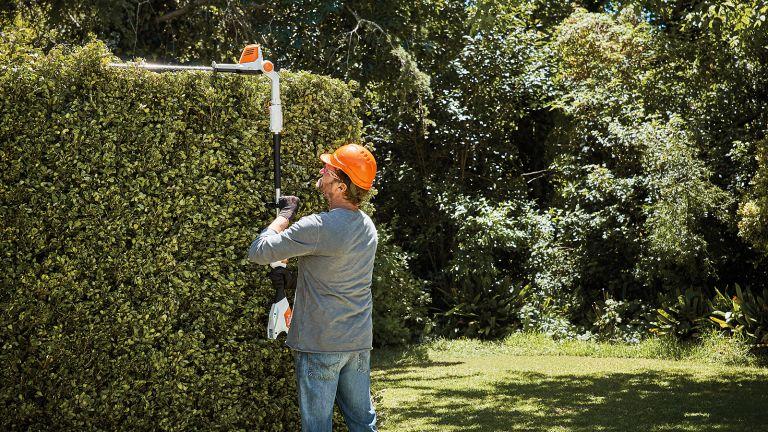 Stihl HLA 56 cordless hedge trimmer
