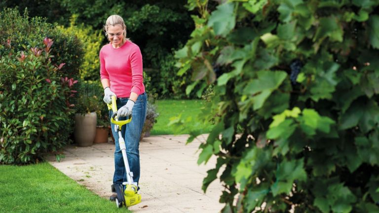Best Lawn Edger 2019: Electric And Manual Edgers For Perfect ...