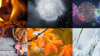 Seasonal images for Halloween, Thanksgiving, Autumn/Fall and more