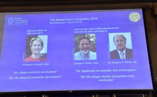 Frances H. Arnold from the California Institute of Technology was awarded one half of the award, while George P. Smith from the University of Missouri and Sir Gregory P. Winter from the MRC Laboratory of Molecular Biology in the UK shared the second half.