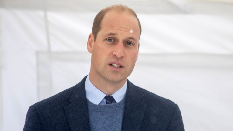 Prince William speaks at an event