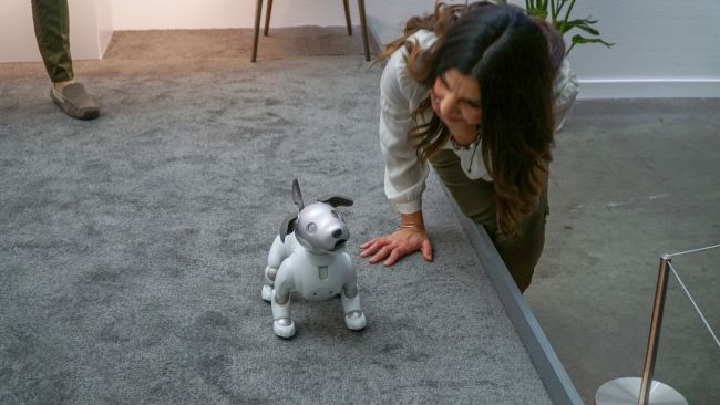 https://www.techradar.com/news/sony-aibo-is-an-adorable-artificially-intelligent-puppy-for-everyone