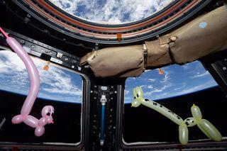 Balloon animals on ISS