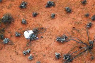 An aerial shot of the Hayabusa2 return capsule and parachute after its landing on a bush in the Woomera Prohibited Area, Australia.