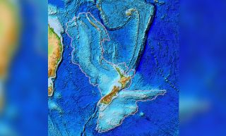 topographic map of Zealandia.
