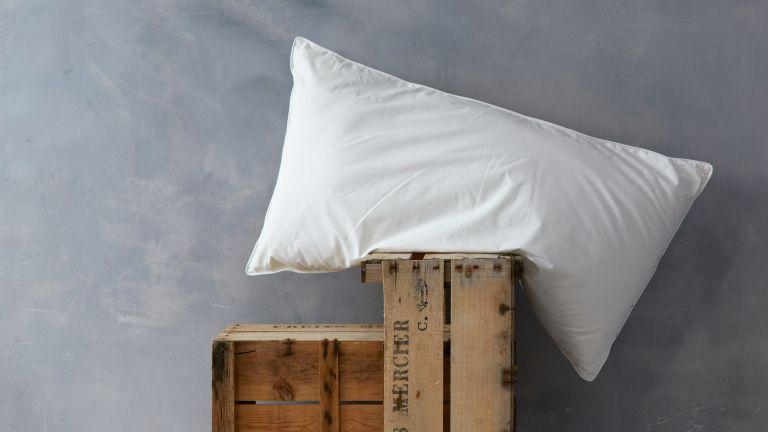 Soak and Sleep pillow on grey background