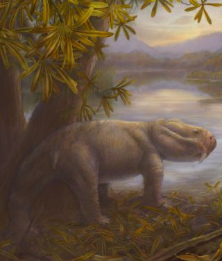 Dicynodon before the Permian extinction