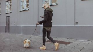 dog walking app paway