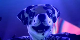 The Dalmatian getting groomed by security before The Masked Singer Season 6 officially kicks off