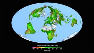 earth gets greener