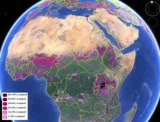 Global cropland map