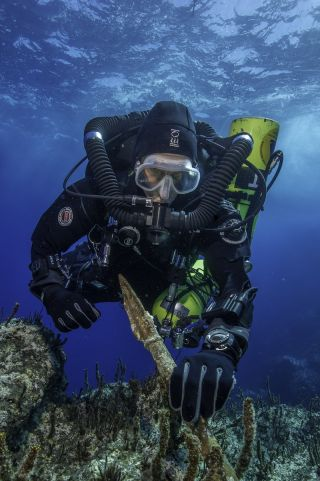 Diver with spear