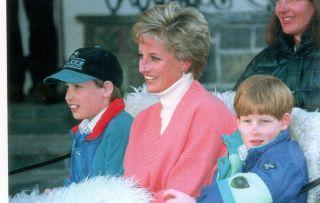 Princess Diana, Prince William, Prince Harry