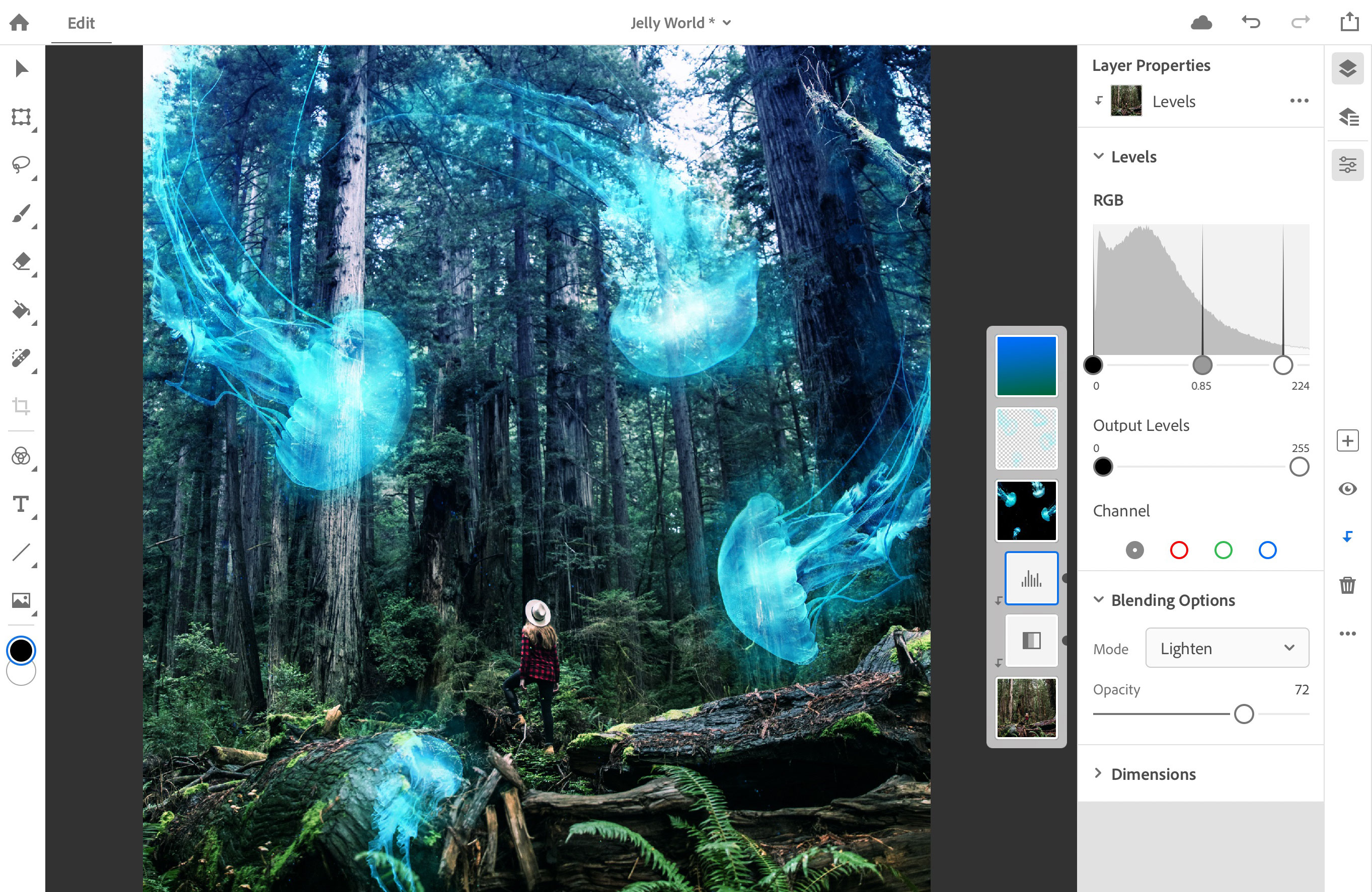 Photoshop for iPad screenshot