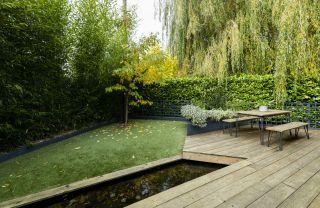a modern low maintenance garden idea with artificial grass
