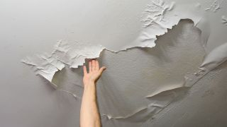What causes dampness in a house? image shows ceiling with damp
