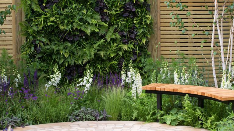 Living wall against slatted wooden fence