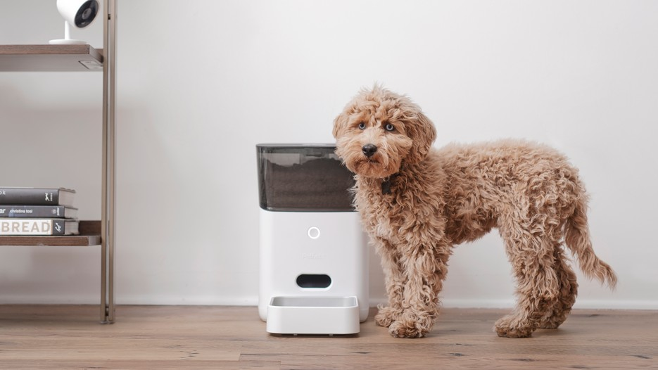 tech gifts for pets - petnet smart feeder