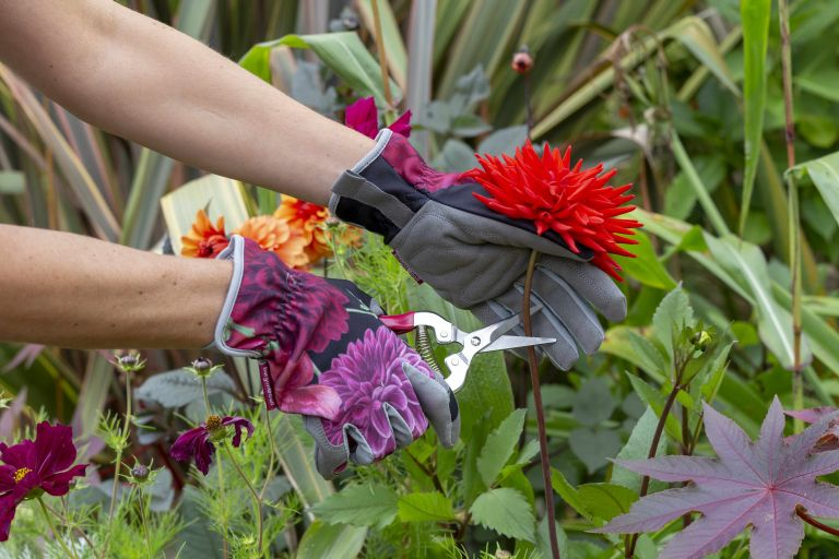 pretty garden tools Gloves cutting flowers