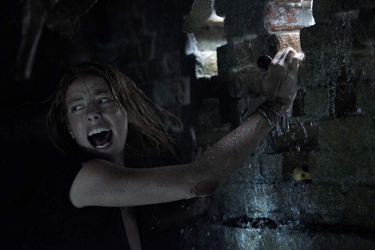 "Crawl review: ""Kaya Scodelario has a convincing Sarah Connor vibe"""