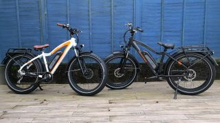 Rad Power Bikes RadRhino
