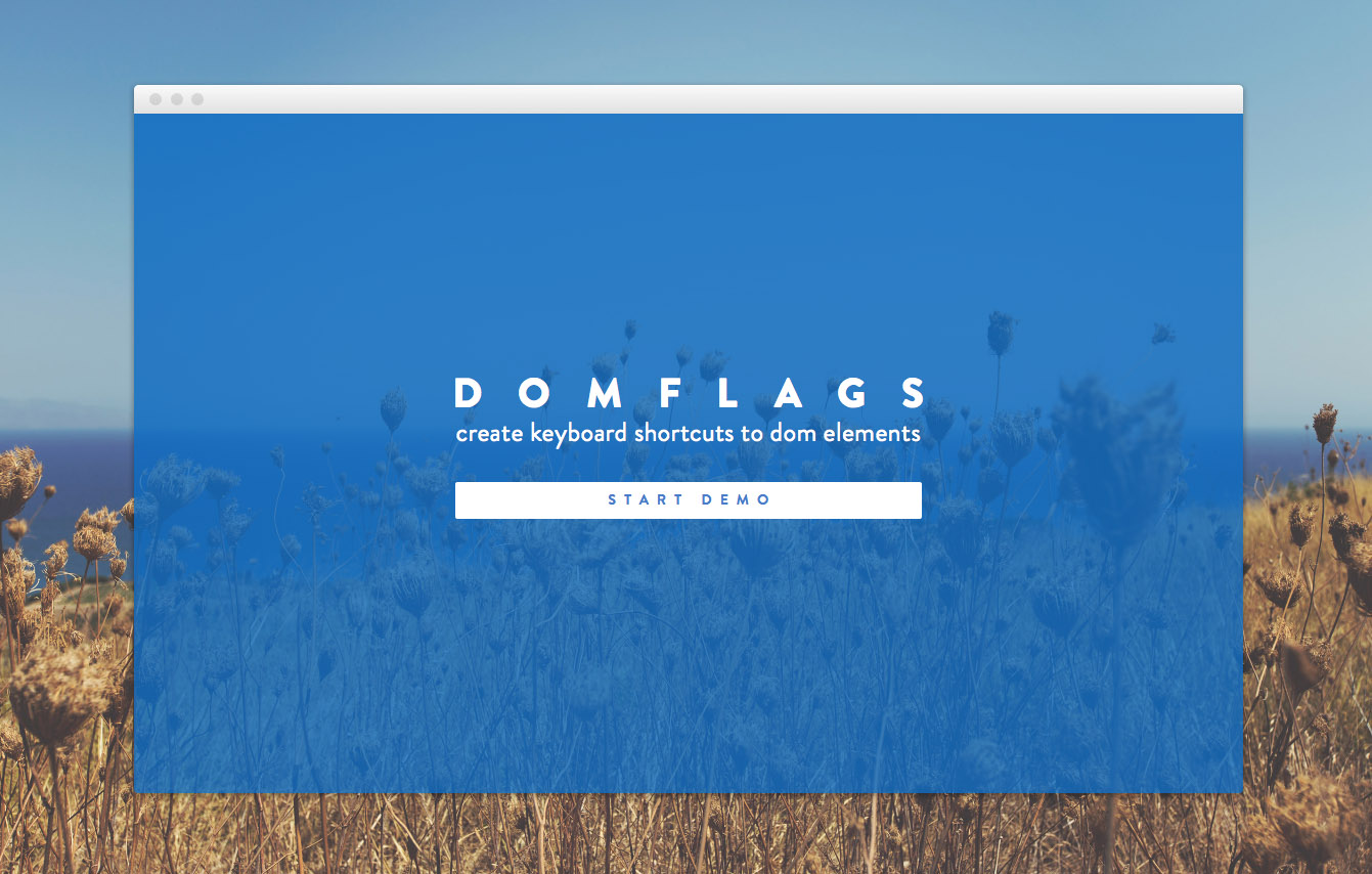 DomFlags website