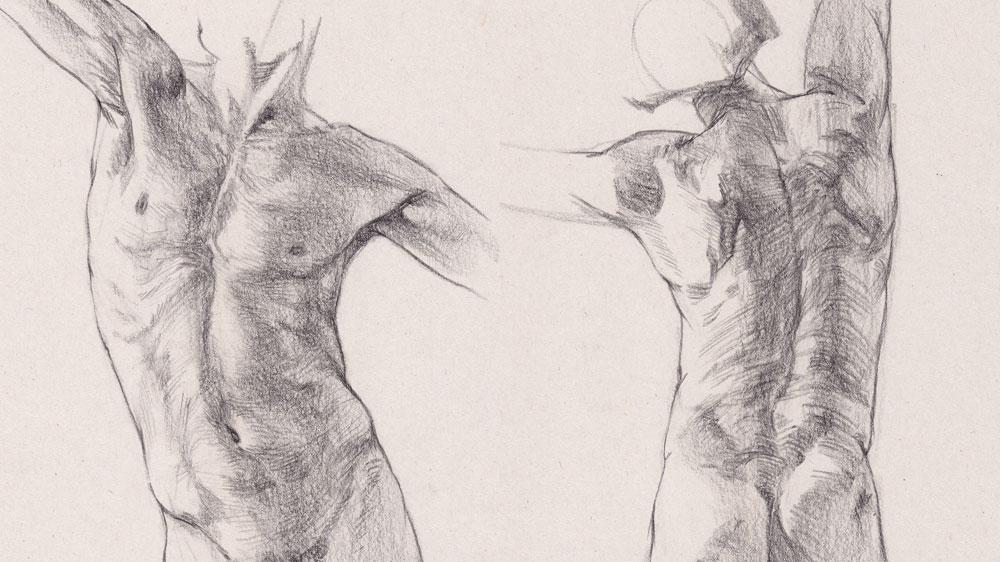 How to draw a torso