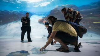 NatGeo Encounter's AV Transports Visitors to a New World
