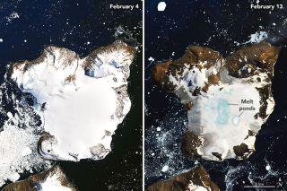 Antarctica's Eagle Island on Feb. 4 and Feb. 13, 2020.