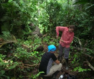 Crystal McMichael and Monica Zimmerman collect soil samples in the tropical rainforests of Peru.