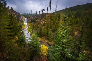 Deschutes National Forest near Bend, Oregon.