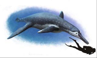 Pliosaur Luskhan itilensis
