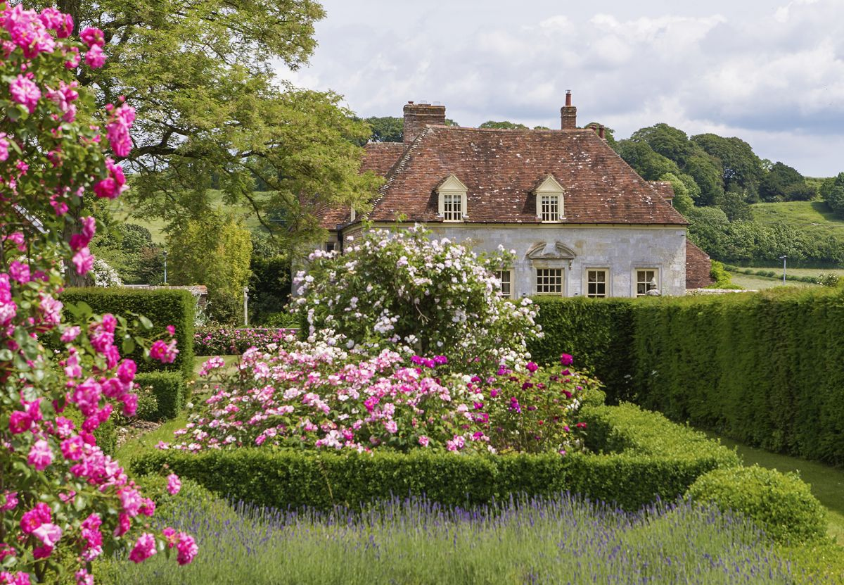 8 surprising garden laws you could be accidentally breaking