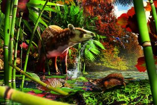 An artist's reconstruction shows a newfound tapiroid drinking in the shallows of an Eocene lake in British Columbia, with the small, newly identified, proto-hedgehog in the foreground.