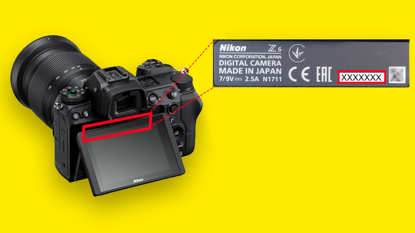 Technical issues with Nikon Z6 and Z7 stabilization – Nikon