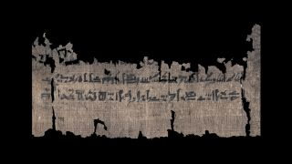 Section of the papyrus that deals with swellings of the skin.