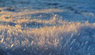 snow-flakes-closeup-02