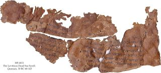 This scroll fragment preserves parts of the Book of Leviticus, in which God promises to reward the people of Israel if they observe the Sabbath and obey the 10 commandments.