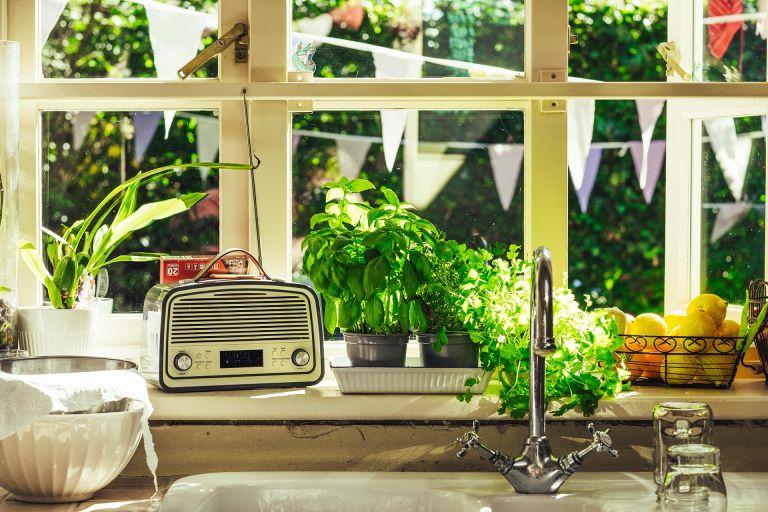 Herbs growing indoors on a kitchen windowsill