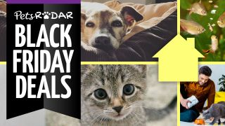 pets at home black friday deals