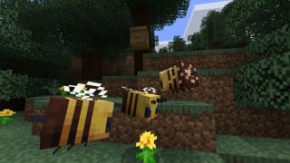 how to get minecraft honey from beehives