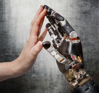 New research at the University of Chicago is laying the groundwork for touch-sensitive prosthetic limbs that one day could convey real-time sensory information to amputees via a direct interface with the brain.